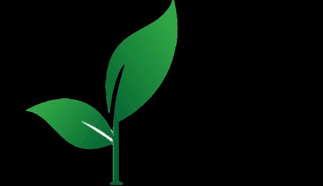 Health Faire